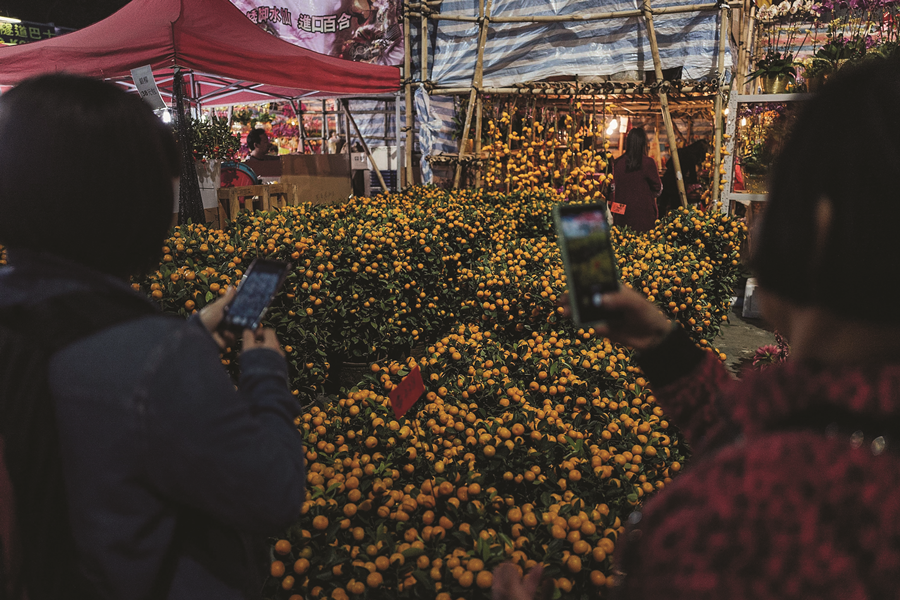 Flower-Markets-Kumquats-1