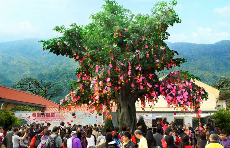 media_Lam-Tsuen-Wishing-Tree-768x494