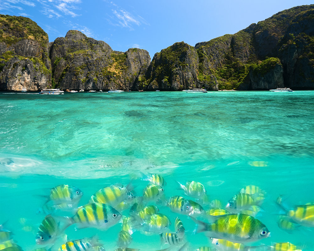 06_Phi-Phi-Island